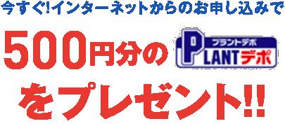 今すぐ!インターネットからのお申し込みで500円分のPLANTデポをプレゼント