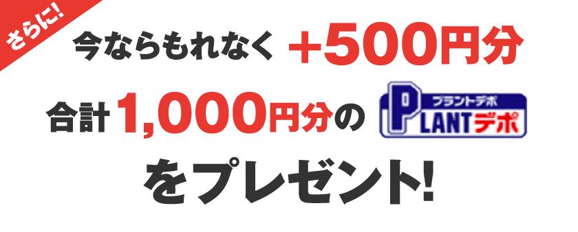 さらに今ならもれなく +500円分 合計1,000円分のPLANTfデポをプレゼント!