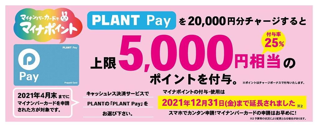 PLANT Payを20,000円分チャージすると上限5,000円相当のポイントを付与。※ポイントはチャージボーナスで付与いたします。
